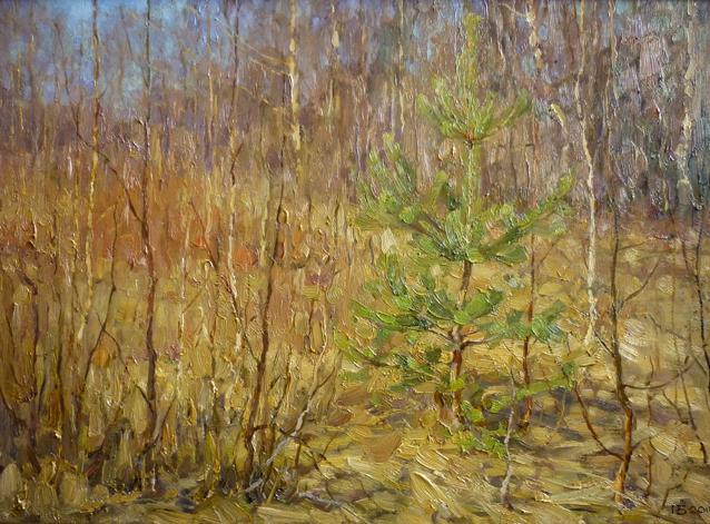 Сосенка. Весна. 2009. Оргалит, масло. 42 х 50